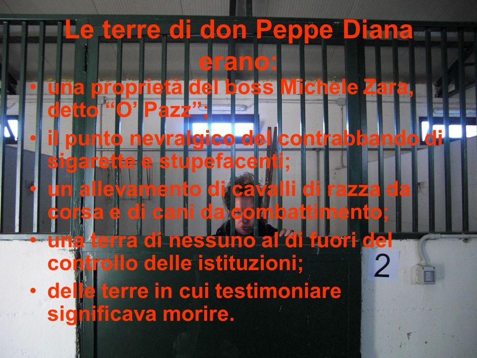 Le terre di don Peppe Diana erano: una proprietà del boss Michele Zara, detto O Pazz; il punto nevralgico del contrabbando di sigarette e stupefacenti