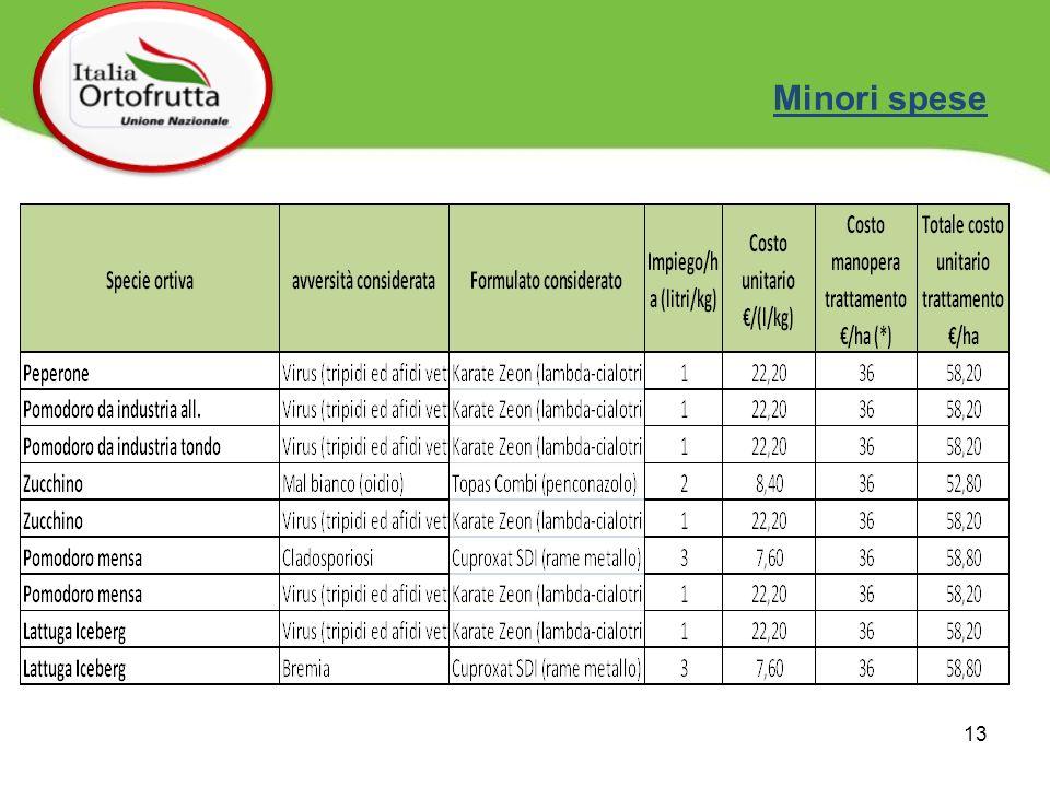 13 Minori spese