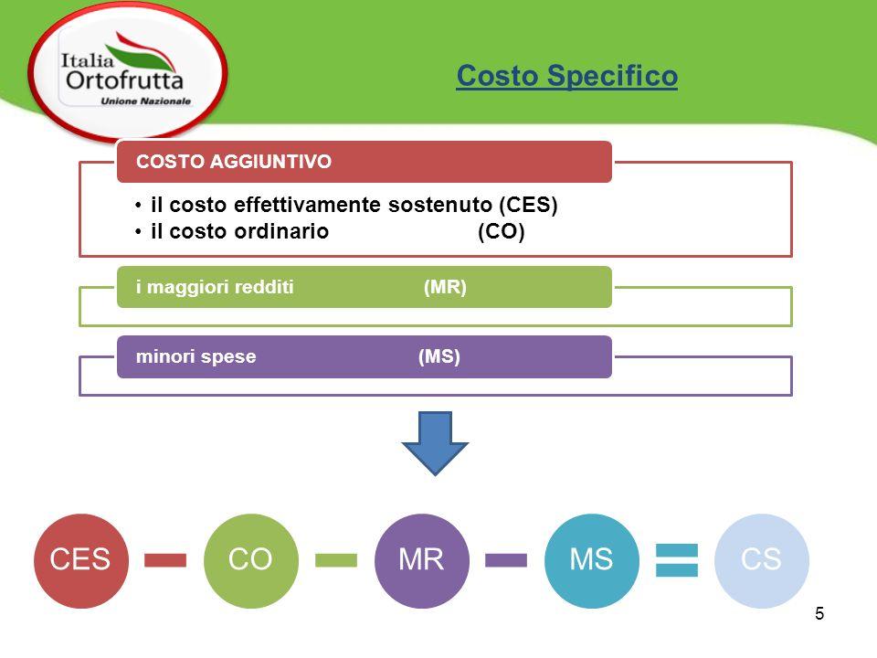 il costo effettivamente sostenuto (CES) il costo ordinario (CO) COSTO AGGIUNTIVOi maggiori redditi (MR)minori spese (MS) CESCOMRMSCS Costo Specifico 5