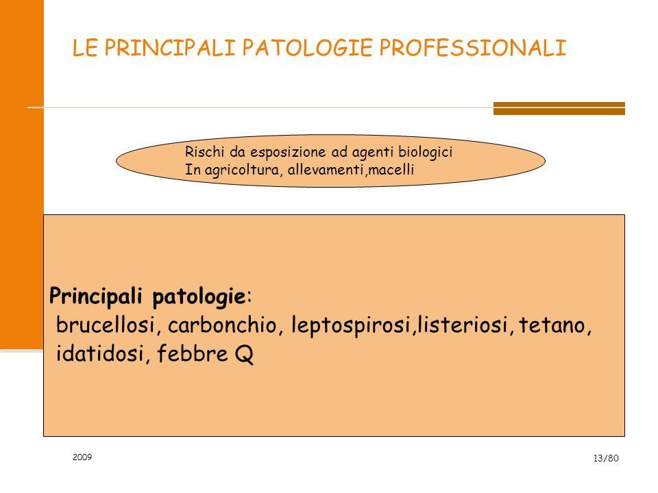 2009 13/80 LE PRINCIPALI PATOLOGIE PROFESSIONALI Rischi da esposizione ad agenti biologici In agricoltura, allevamenti,macelli Principali patologie: b