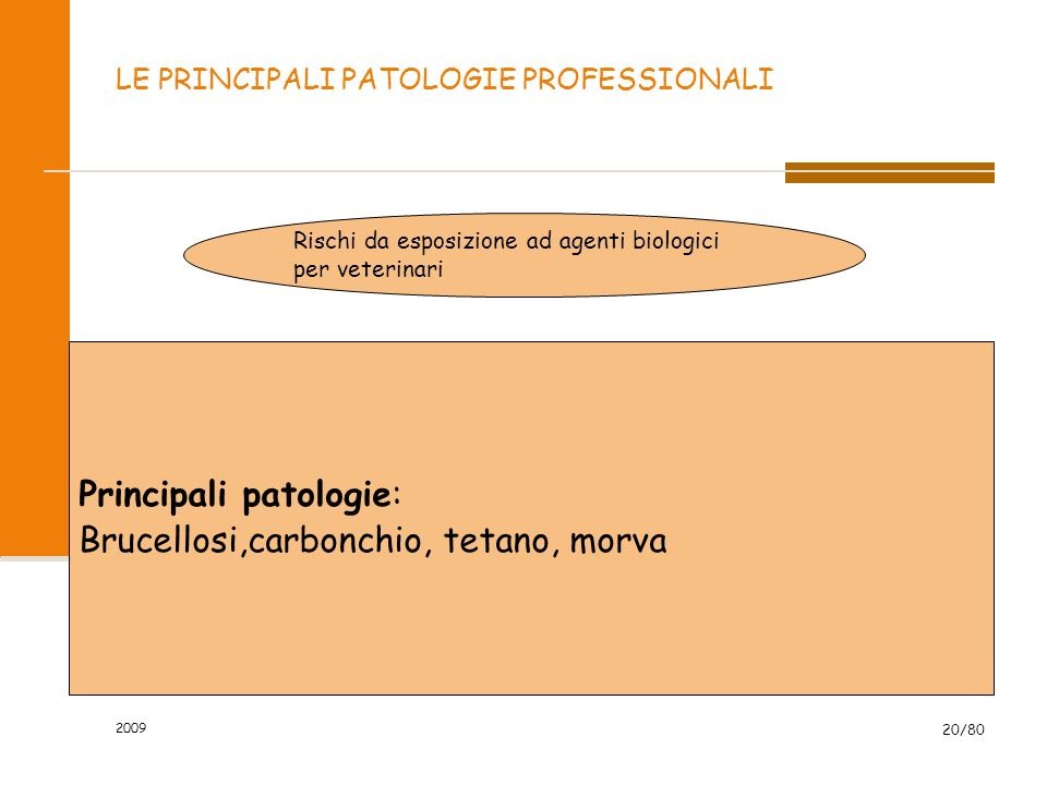 2009 20/80 LE PRINCIPALI PATOLOGIE PROFESSIONALI Rischi da esposizione ad agenti biologici per veterinari Principali patologie: Brucellosi,carbonchio,