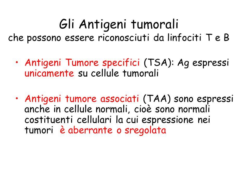 Gli Antigeni tumorali che possono essere riconosciuti da linfociti T e B Antigeni Tumore specifici (TSA): Ag espressi unicamente su cellule tumorali A