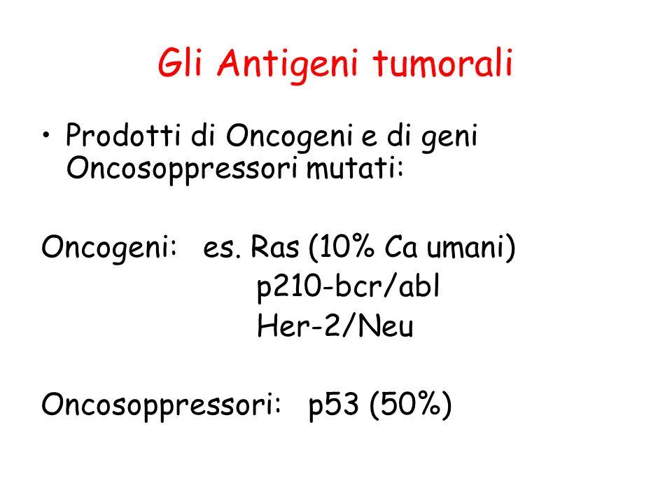 Gli Antigeni tumorali Prodotti di Oncogeni e di geni Oncosoppressori mutati: Oncogeni: es. Ras (10% Ca umani) p210-bcr/abl Her-2/Neu Oncosoppressori: