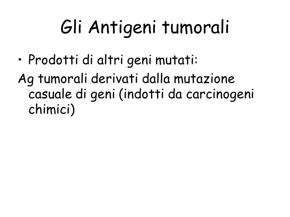 Gli Antigeni tumorali Prodotti di altri geni mutati: Ag tumorali derivati dalla mutazione casuale di geni (indotti da carcinogeni chimici)