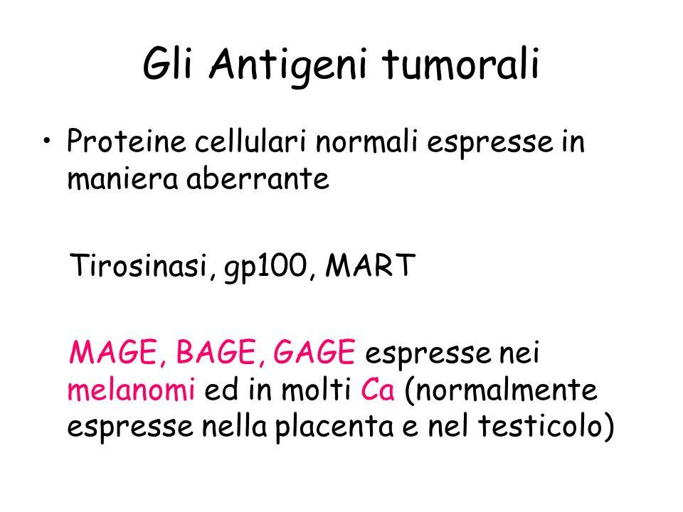 Gli Antigeni tumorali Proteine cellulari normali espresse in maniera aberrante Tirosinasi, gp100, MART MAGE, BAGE, GAGE espresse nei melanomi ed in mo