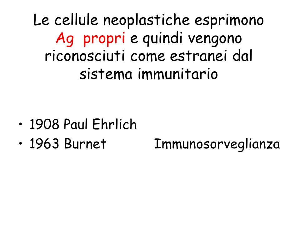 Le cellule neoplastiche esprimono Ag propri e quindi vengono riconosciuti come estranei dal sistema immunitario 1908 Paul Ehrlich 1963 Burnet Immunoso
