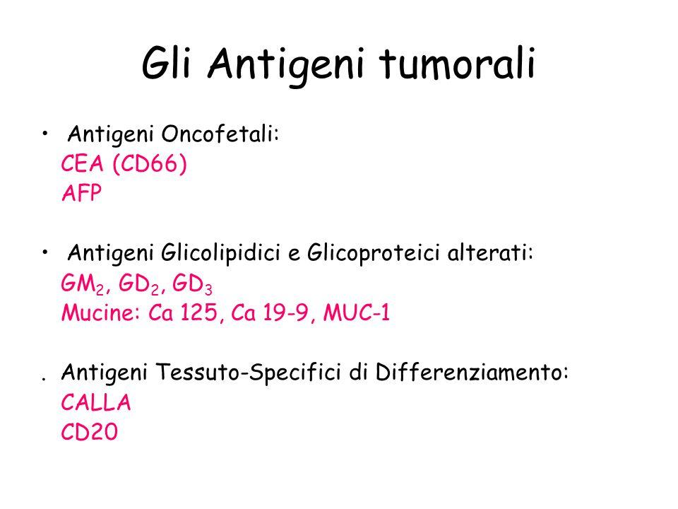 Gli Antigeni tumorali Antigeni Oncofetali: CEA (CD66) AFP Antigeni Glicolipidici e Glicoproteici alterati: GM 2, GD 2, GD 3 Mucine: Ca 125, Ca 19-9, M