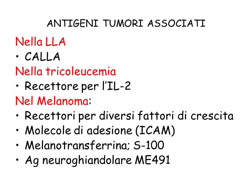 ANTIGENI TUMORI ASSOCIATI Nella LLA CALLA Nella tricoleucemia Recettore per lIL-2 Nel Melanoma: Recettori per diversi fattori di crescita Molecole di