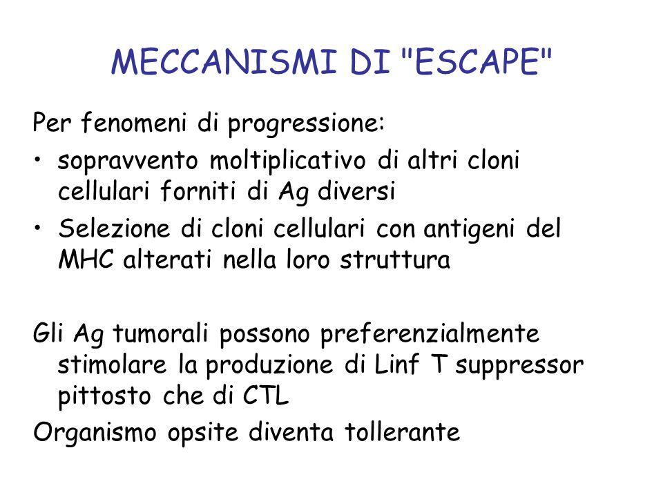 MECCANISMI DI