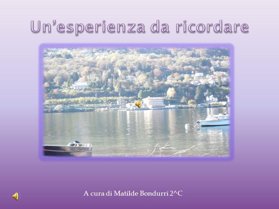 A cura di Matilde Bondurri 2^C