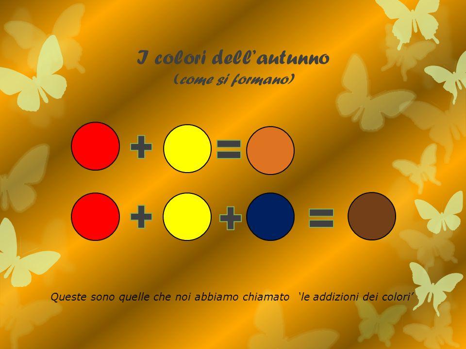I colori dellautunno (come si formano) Queste sono quelle che noi abbiamo chiamato le addizioni dei colori
