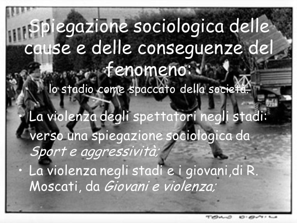 Spiegazione sociologica delle cause e delle conseguenze del fenomeno: lo stadio come spaccato della società. La violenza degli spettatori negli stadi: