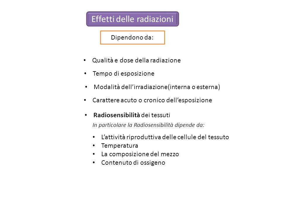 Dipendono da: Lattività riproduttiva delle cellule del tessuto Temperatura La composizione del mezzo Contenuto di ossigeno Qualità e dose della radiaz