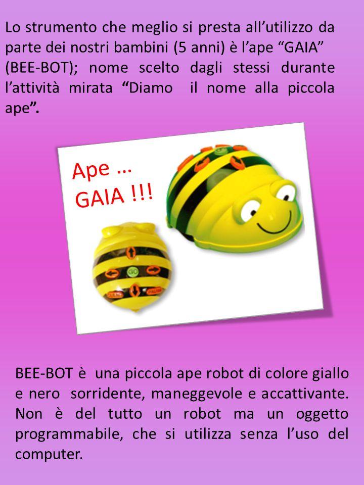 Lo strumento che meglio si presta allutilizzo da parte dei nostri bambini (5 anni) è lape GAIA (BEE-BOT); nome scelto dagli stessi durante lattività mirata Diamo il nome alla piccola ape.