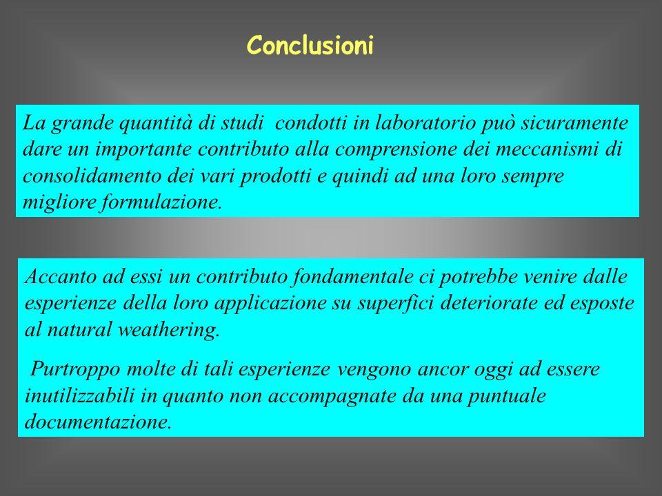 La grande quantità di studi condotti in laboratorio può sicuramente dare un importante contributo alla comprensione dei meccanismi di consolidamento d