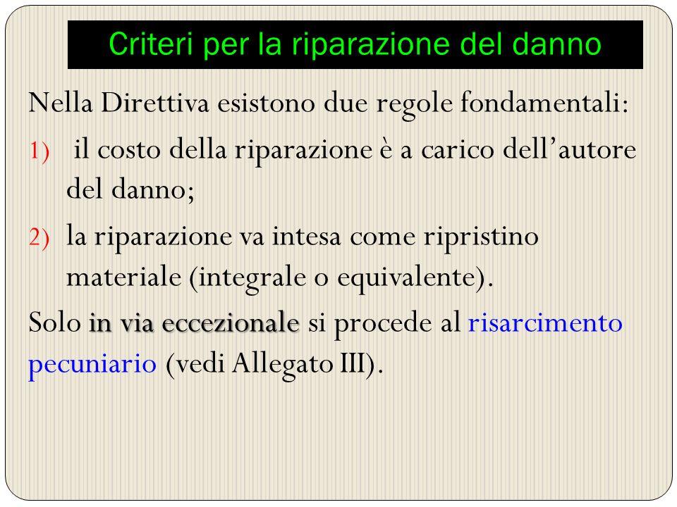 Criteri per la riparazione del danno Nella Direttiva esistono due regole fondamentali: 1) il costo della riparazione è a carico dellautore del danno;