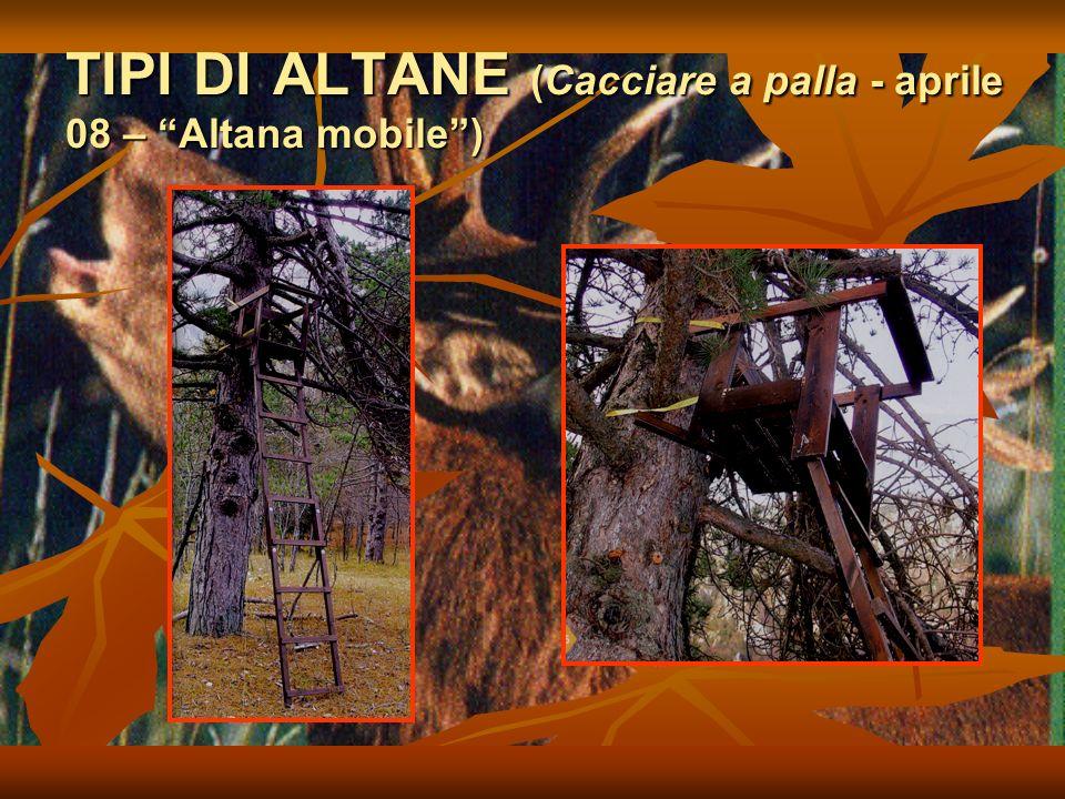 TIPI DI ALTANE (Cacciare a palla - aprile 08 – Altana mobile)