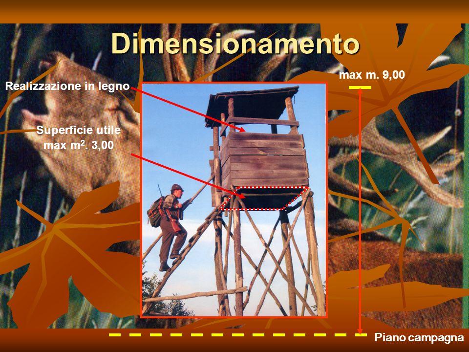 Dimensionamento max m. 9,00 max m 2. 3,00 Realizzazione in legno Superficie utile Piano campagna