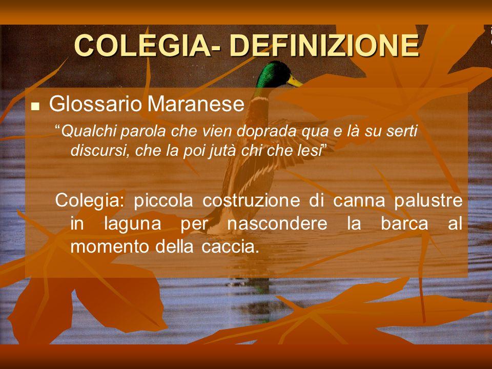 COLEGIA- DEFINIZIONE Glossario Maranese Qualchi parola che vien doprada qua e là su serti discursi, che la poi jutà chi che lesi Colegia: piccola costruzione di canna palustre in laguna per nascondere la barca al momento della caccia.