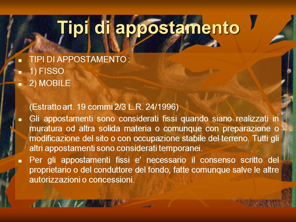 Tipi di appostamento TIPI DI APPOSTAMENTO : 1) FISSO 2) MOBILE (Estratto art.