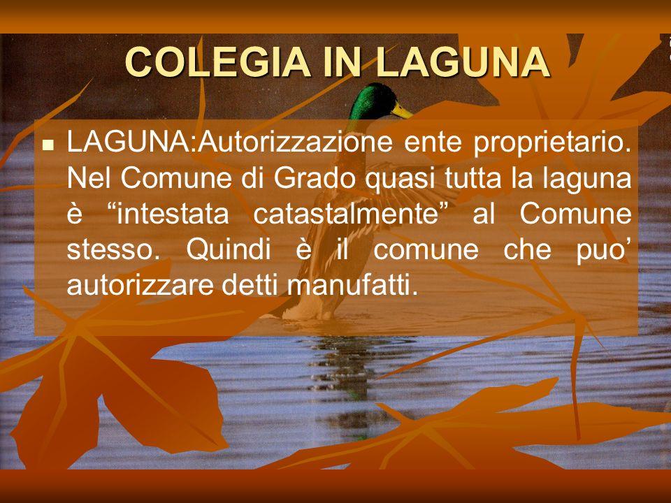 COLEGIA IN LAGUNA LAGUNA:Autorizzazione ente proprietario.