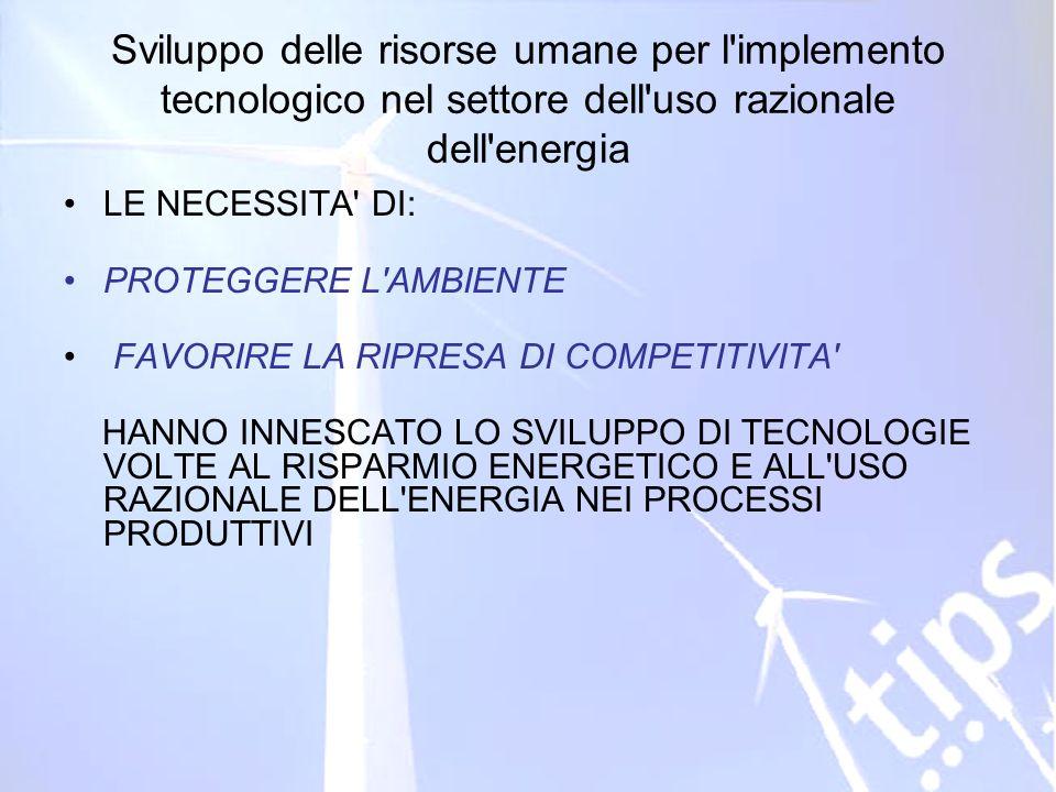 ID 203178 RVA Sviluppo delle risorse umane per l'implemento tecnologico nel settore dell'uso razionale dell'energia LE NECESSITA' DI: PROTEGGERE L'AMB