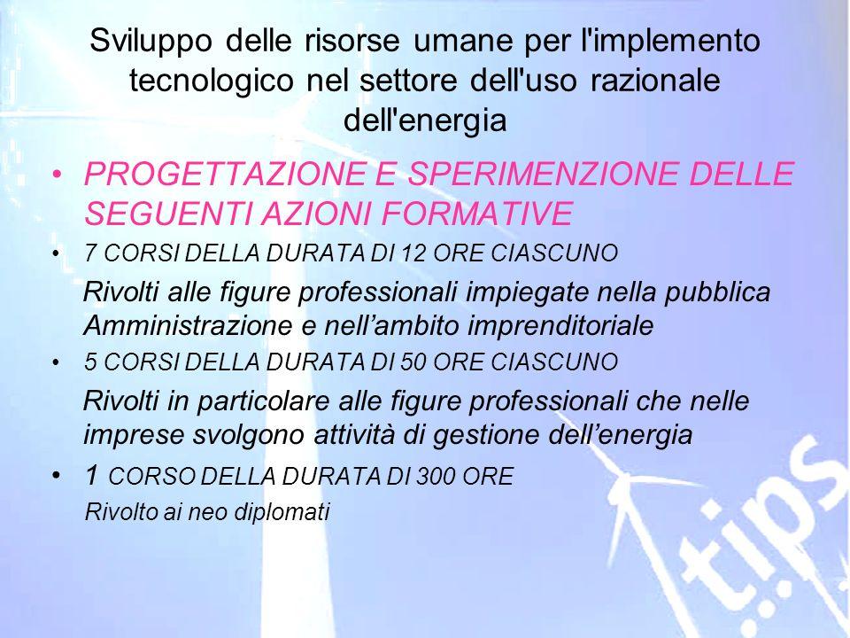 ID 203178 RVA Sviluppo delle risorse umane per l'implemento tecnologico nel settore dell'uso razionale dell'energia PROGETTAZIONE E SPERIMENZIONE DELL