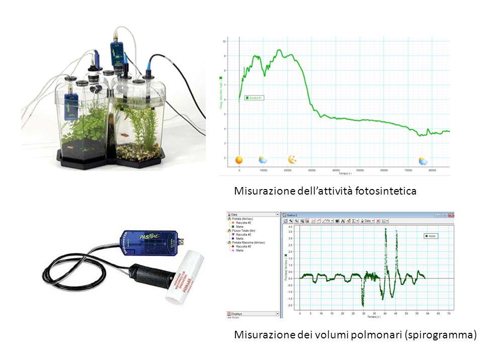 Obiettivi Selezionare, adattare e testare una serie di esperienze di laboratorio utilizzando le nuove attrezzature didattiche (sonde Pasco per lacquisizione dei dati on-line).