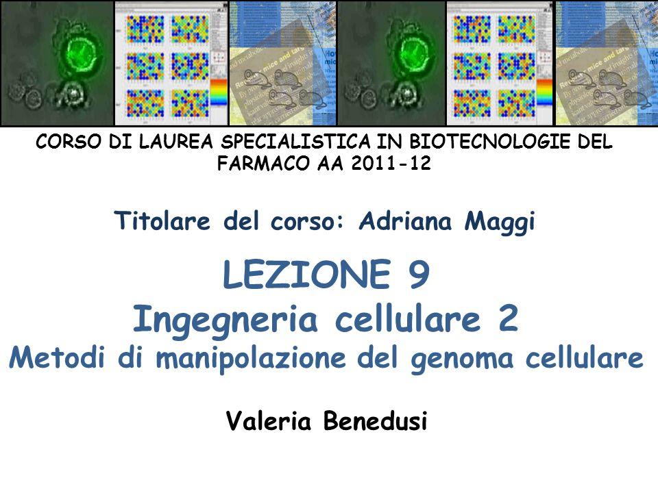 LEZIONE 9 Ingegneria cellulare 2 Metodi di manipolazione del genoma cellulare Valeria Benedusi CORSO DI LAUREA SPECIALISTICA IN BIOTECNOLOGIE DEL FARM