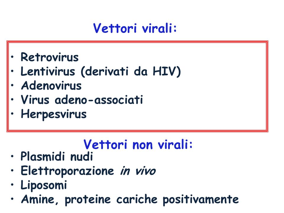 1.DISABLED HSV VECTORS Virus ricombinanti ottenuti eliminando uno o più geni precoci immediati.