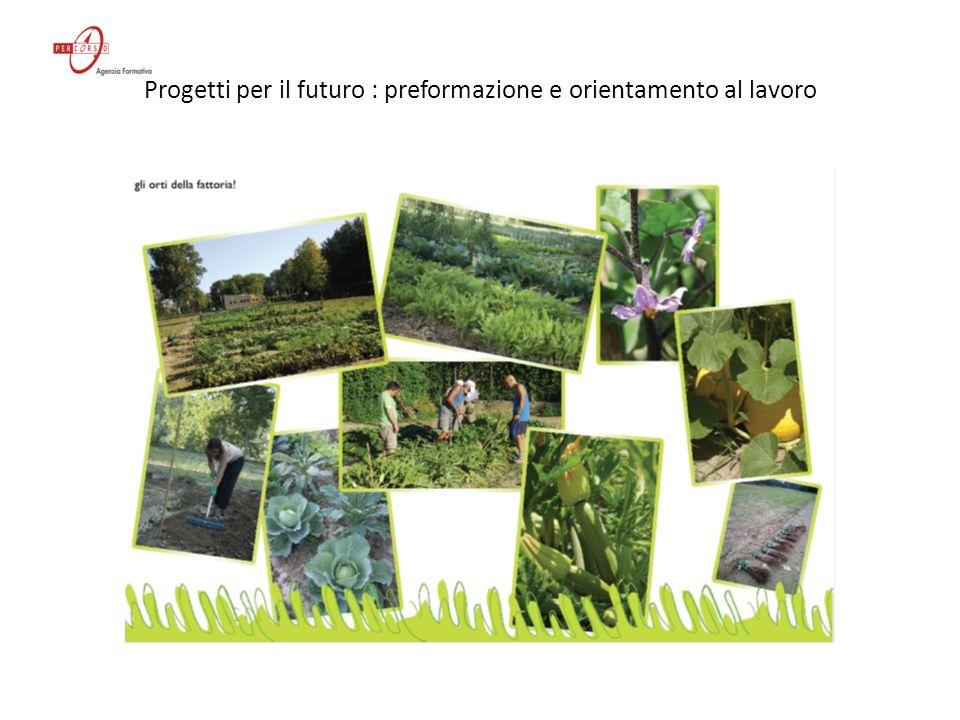 Progetti per il futuro : preformazione e orientamento al lavoro La consolida (Symphytum officinale, detta anche consolida maggiore) ha un effetto benefico sulle piante dellorto e del giardino.