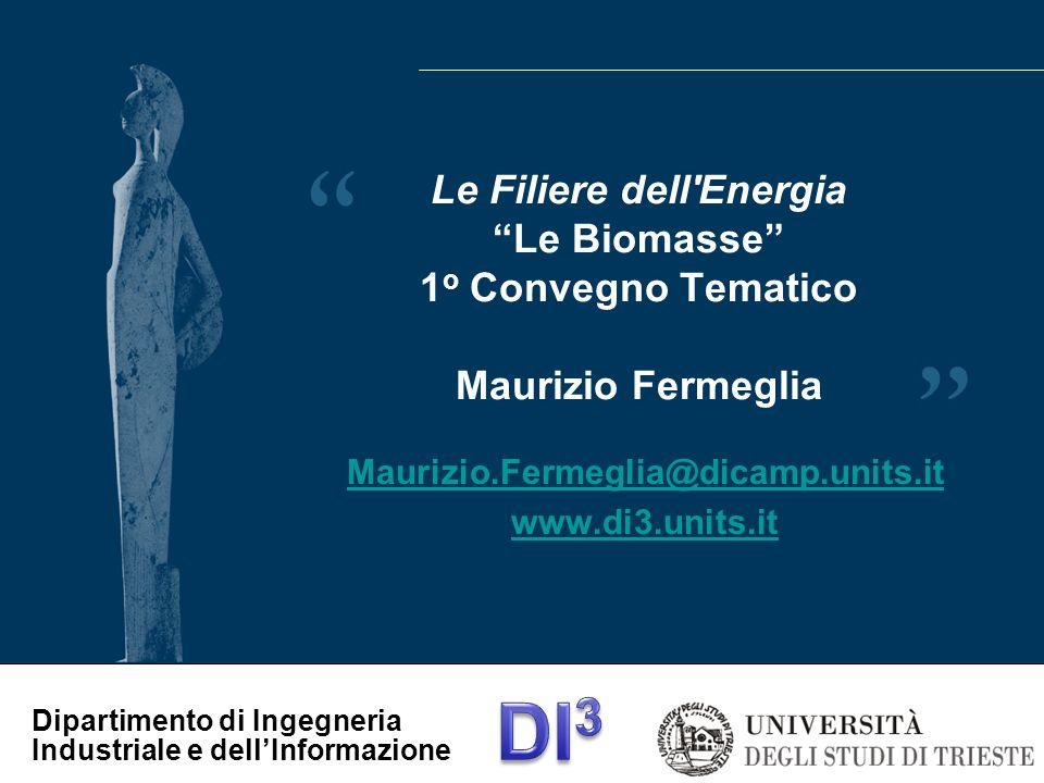 Dipartimento di Ingegneria Industriale e dellInformazione Per Informazioni: Maurizio Fermeglia (Mauf@dicamp.units.it) Università di Trieste www.di3.units.it