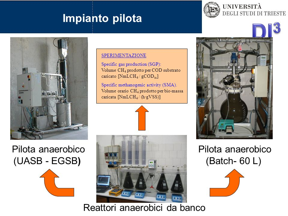 Pilota anaerobico (UASB - EGSB) Reattori anaerobici da banco Pilota anaerobico (Batch- 60 L) SPERIMENTAZIONE Specific gas production (SGP): Volume CH 4 prodotto per COD substrato caricato [NmLCH 4 / gCOD in ] Specific methanogenic activity (SMA).