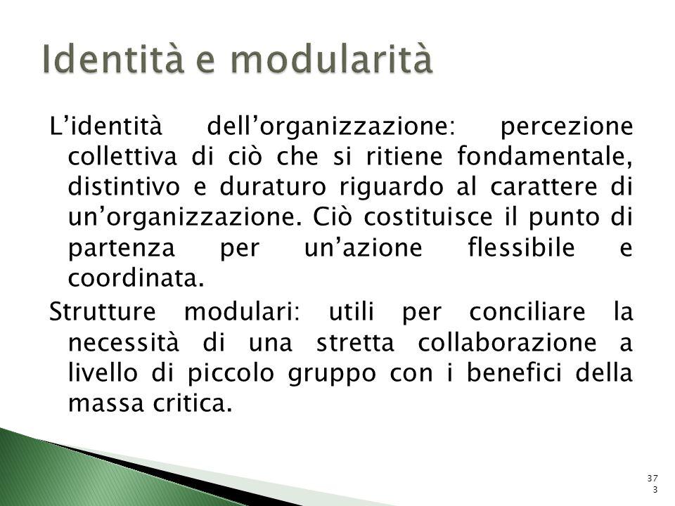 Lidentità dellorganizzazione: percezione collettiva di ciò che si ritiene fondamentale, distintivo e duraturo riguardo al carattere di unorganizzazion