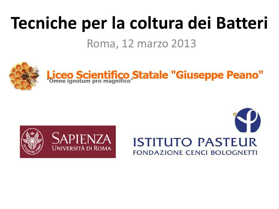 Tecniche per la coltura dei Batteri Roma, 12 marzo 2013