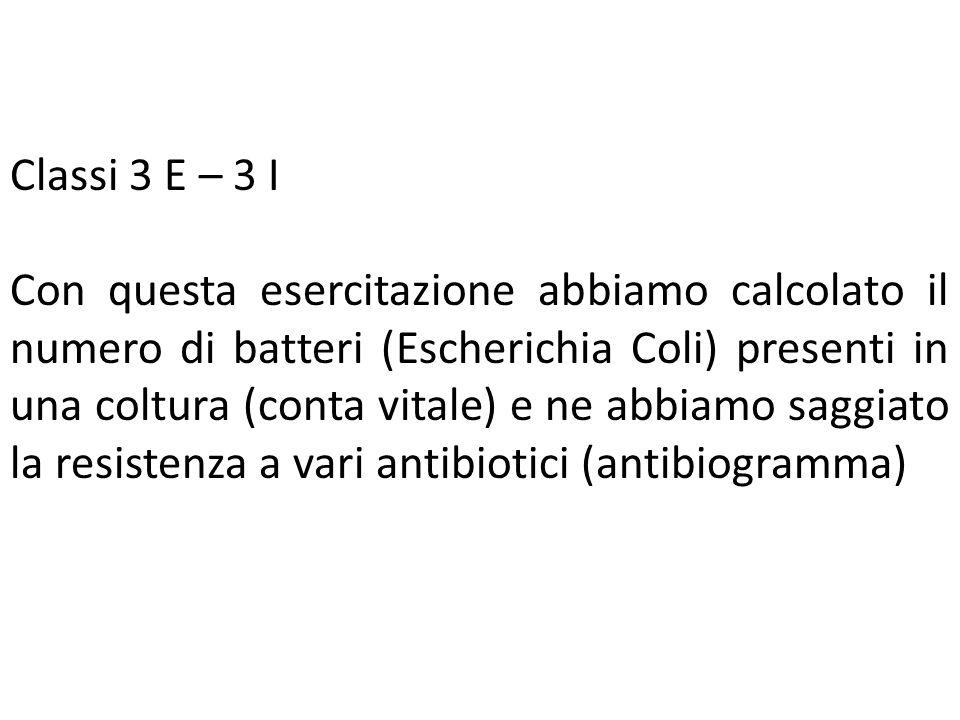 Classi 3 E – 3 I Con questa esercitazione abbiamo calcolato il numero di batteri (Escherichia Coli) presenti in una coltura (conta vitale) e ne abbiam