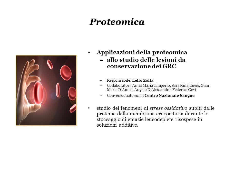 Proteomica Applicazioni della proteomica – allo studio delle lesioni da conservazione dei GRC – Responsabile: Lello Zolla – Collaboratori: Anna Maria