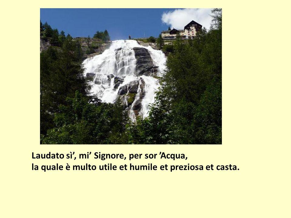 Laudato sì, mi Signore, per sor Acqua, la quale è multo utile et humile et preziosa et casta.