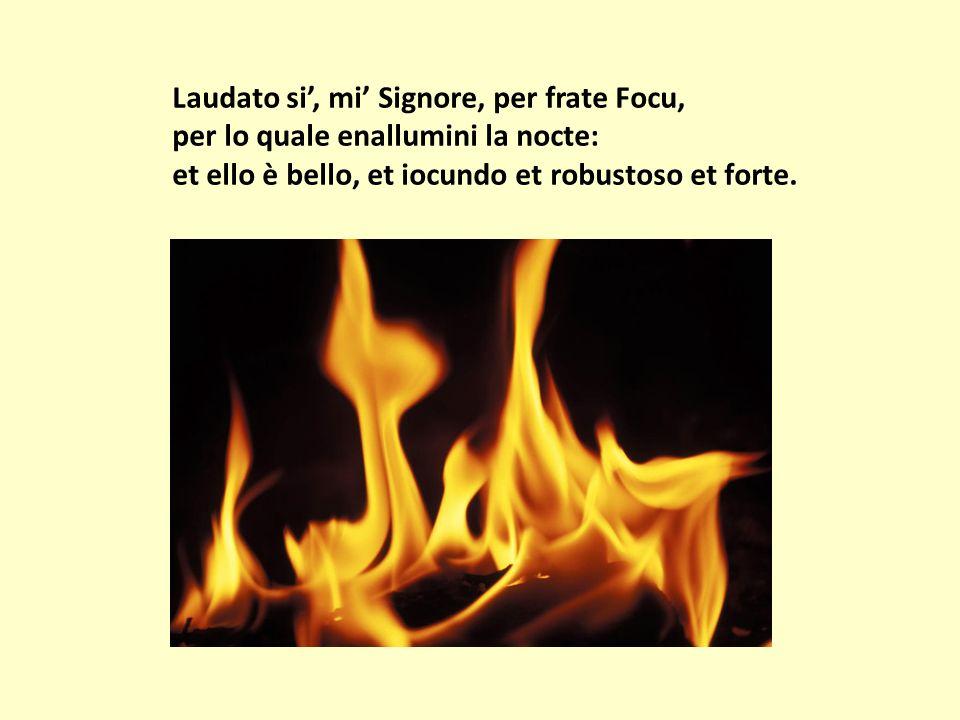 Laudato si, mi Signore, per frate Focu, per lo quale enallumini la nocte: et ello è bello, et iocundo et robustoso et forte.
