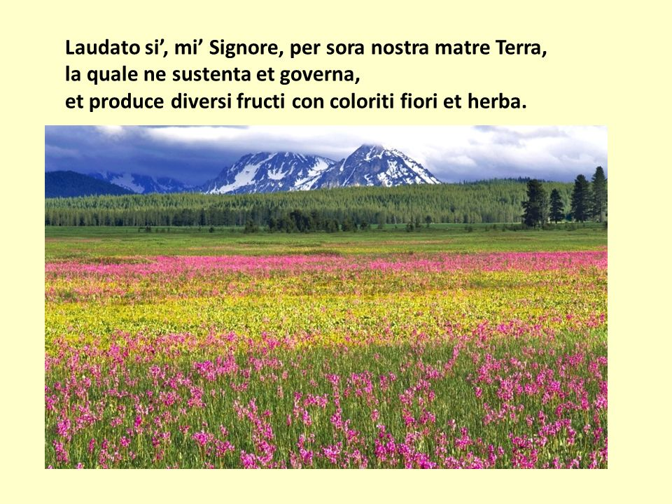 Laudato si, mi Signore, per sora nostra matre Terra, la quale ne sustenta et governa, et produce diversi fructi con coloriti fiori et herba.