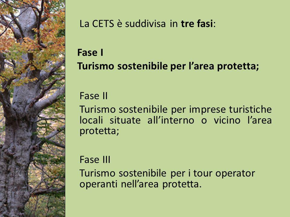 La CETS è suddivisa in tre fasi: Fase II Turismo sostenibile per imprese turistiche locali situate allinterno o vicino larea protetta; Fase I Turismo sostenibile per larea protetta; Fase III Turismo sostenibile per i tour operator operanti nellarea protetta.
