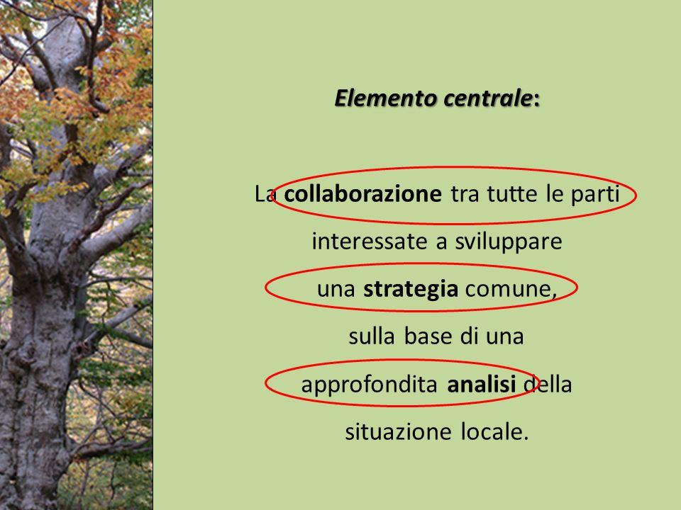 Elemento centrale: La collaborazione tra tutte le parti interessate a sviluppare una strategia comune, sulla base di una approfondita analisi della situazione locale.