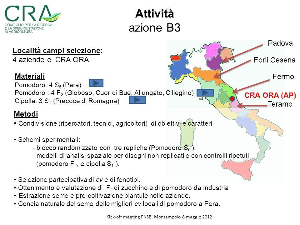 Attività azione B3 Località campi selezione: 4 aziende e CRA ORA Padova Forli Cesena Fermo Teramo CRA ORA (AP) Materiali Pomodoro: 4 S 5 (Pera) Pomodo