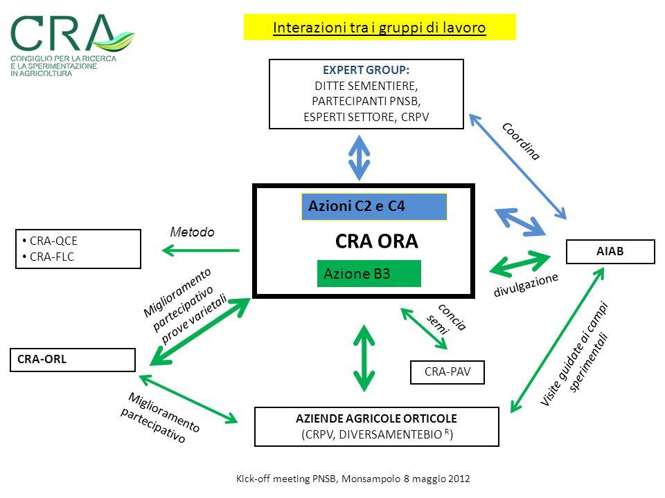 Miglioramento partecipativo prove varietali Kick-off meeting PNSB, Monsampolo 8 maggio 2012 CRA ORA Azione B3 CRA-QCE CRA-FLC CRA-ORL AZIENDE AGRICOLE