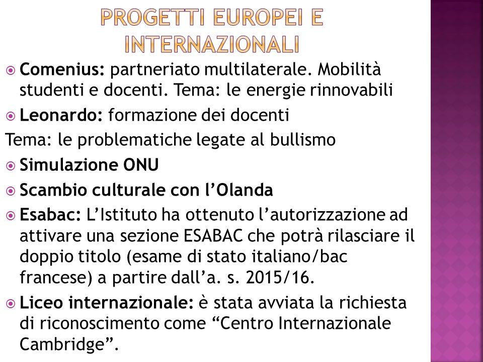 Comenius: partneriato multilaterale. Mobilità studenti e docenti.