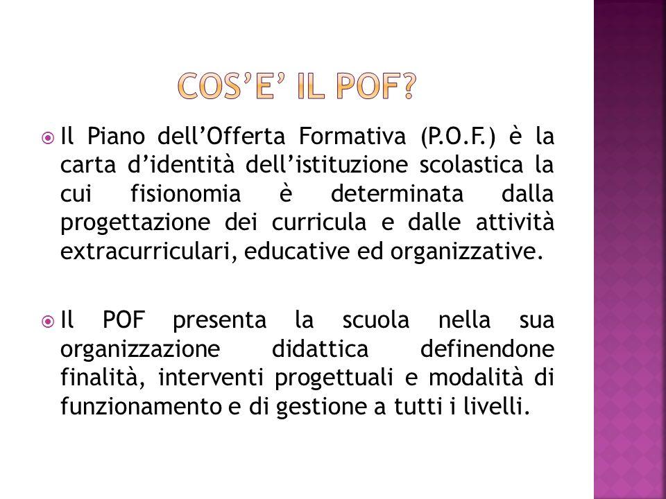 Il Piano dellOfferta Formativa (P.O.F.) è la carta didentità dellistituzione scolastica la cui fisionomia è determinata dalla progettazione dei curricula e dalle attività extracurriculari, educative ed organizzative.