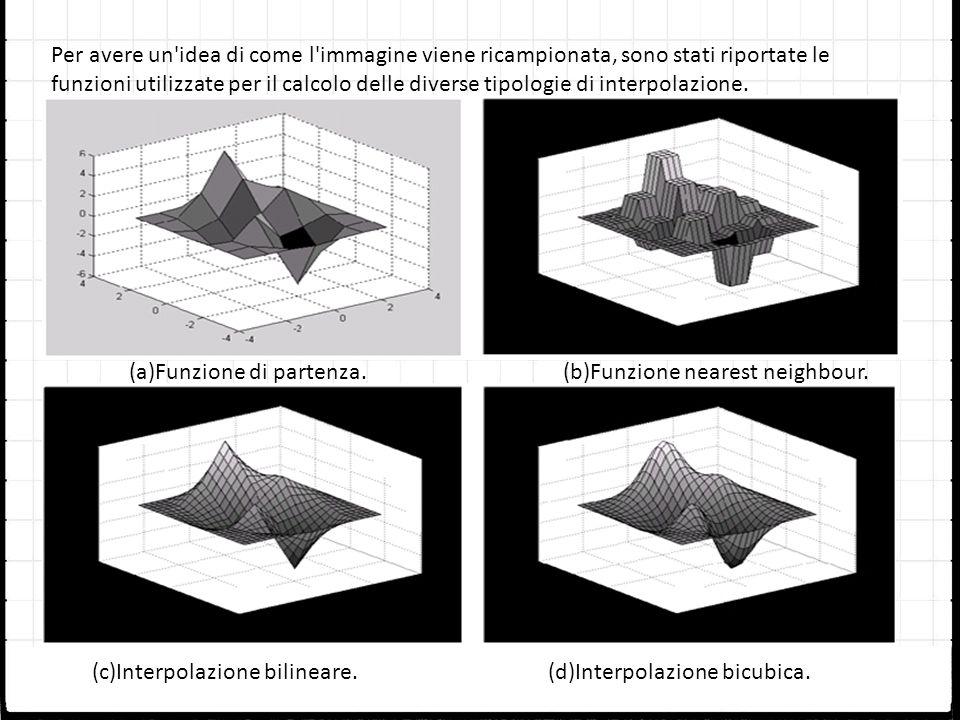Per avere un'idea di come l'immagine viene ricampionata, sono stati riportate le funzioni utilizzate per il calcolo delle diverse tipologie di interpo