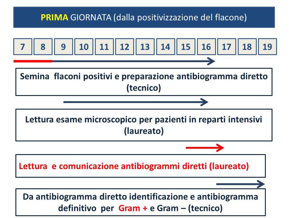 78910111213141516171819 Semina flaconi positivi e preparazione antibiogramma diretto (tecnico) Lettura esame microscopico per pazienti in reparti inte