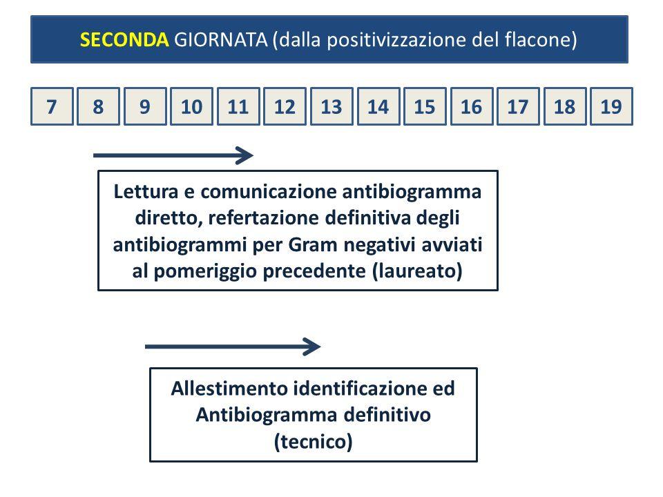 78910111213141516171819 Lettura e comunicazione antibiogramma diretto, refertazione definitiva degli antibiogrammi per Gram negativi avviati al pomeri