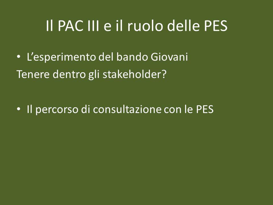 Il PAC III e il ruolo delle PES Lesperimento del bando Giovani Tenere dentro gli stakeholder? Il percorso di consultazione con le PES